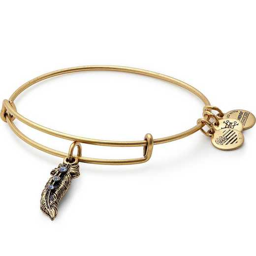 A17EB25RG: Feather Charm Bangle - Rafaelian Gold Finish