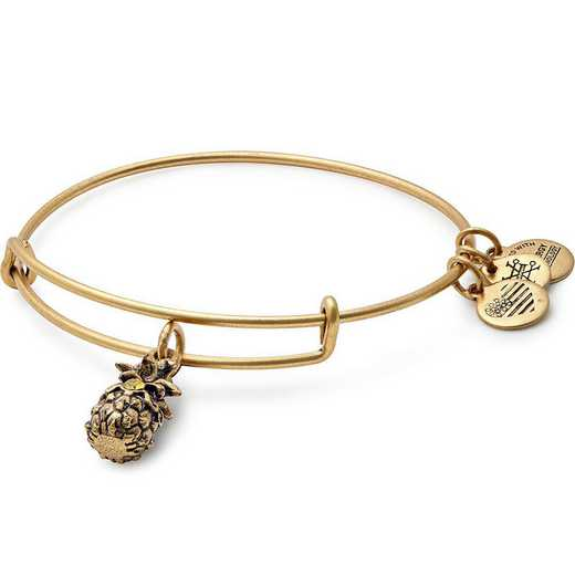 A17EB26RG: Pineapple Charm Bangle - Rafaelian Gold Finish