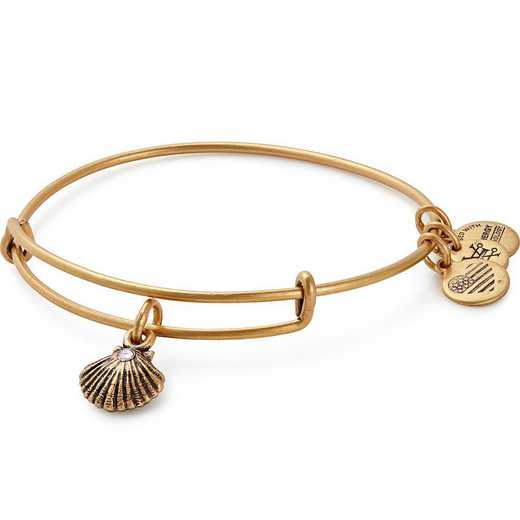 A17EBSEASRG: Sea Shell Charm Bangle - Rafaelian Gold Finish