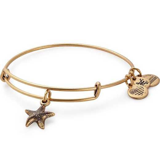 A17EBSTRFRG: Starfish Charm Bangle - Rafaelian Gold Finish