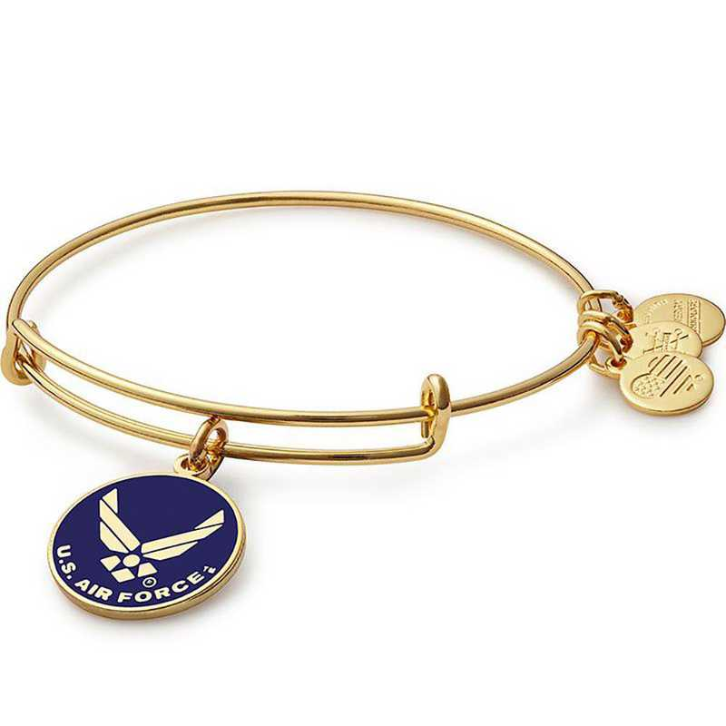 AS16USAFYG: U.S. Air Force Bangle - Shiny Gold Finish