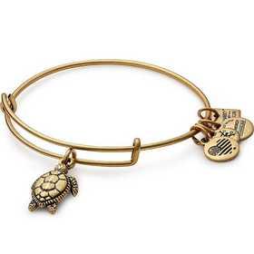 CBD16STRG: Turtle Charm Bangle - Rafaelian Gold Finish