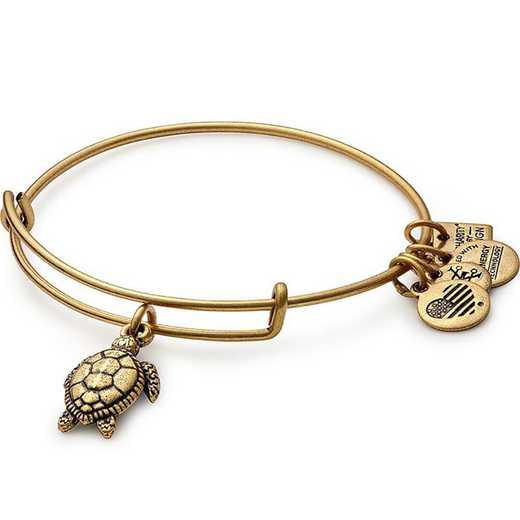 CBD16STRG: Turtle Charm Bangle - Rafaelian Gold Finish
