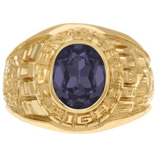 Men's Customizable Traditional Class Ring with Oval Stone - Champion