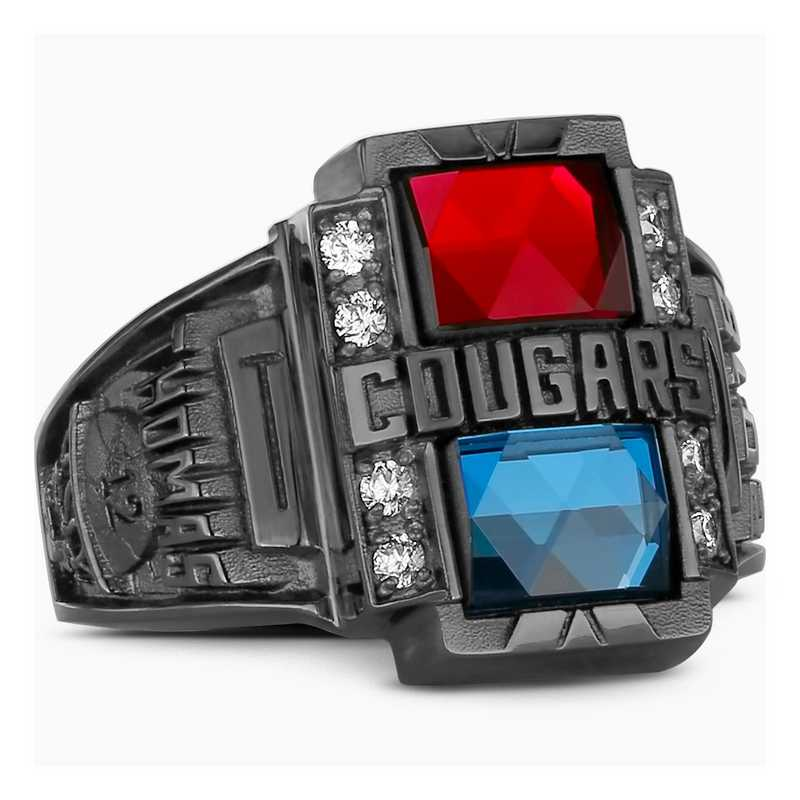 Men's L39 Valiant Legend Class Ring