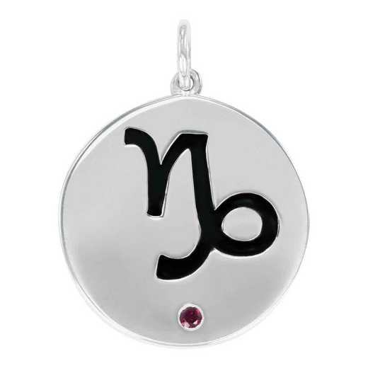 Liz James Capricorn Zodiac Charm