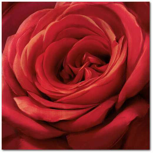"Solo Red 16""x16"" Gallery-Wrapped Canvas Wall Art"