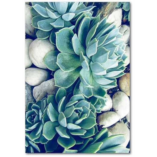 "Succulents  12""x18"" Gallery-Wrapped Canvas Wall Art"
