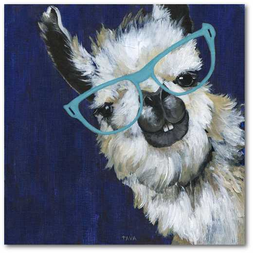 "Llama hip 16""x16"" Gallery-Wrapped Canvas Wall Art"
