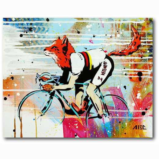 WEB-MV243-16x20: Fox Cycle, 16x20