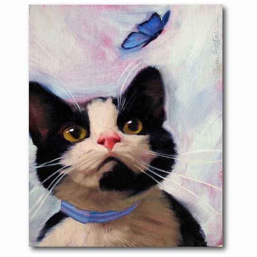 WEB-MV276-16x20: Cat and Butterfly , 16x20