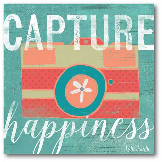 WEB-TS209-16x16: Capture Happiness , 16x16