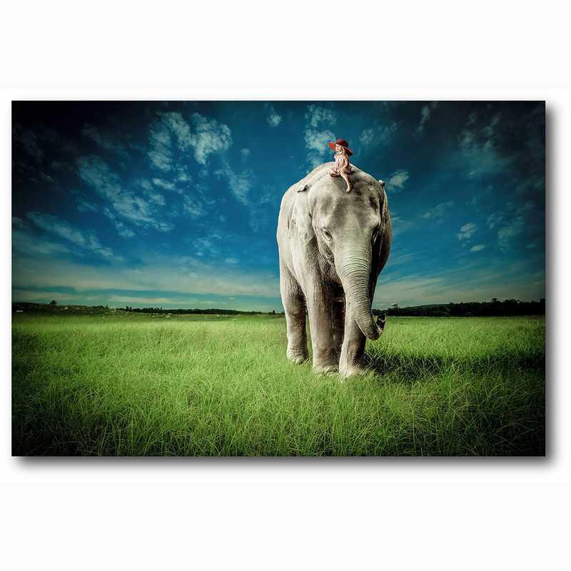 WEB-MV313-12x18: Elephant Carry Me , 12x18