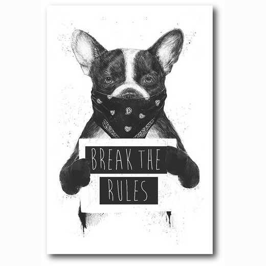 WEB-MV348-12x18: Rebel Dog , 12x18