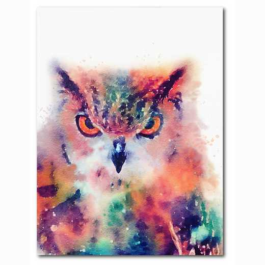 WEB-MV361-18x24: Colorful Owl , 18x24