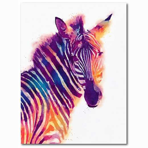 WEB-MV365-18x24: Colorful Zebra , 18x24
