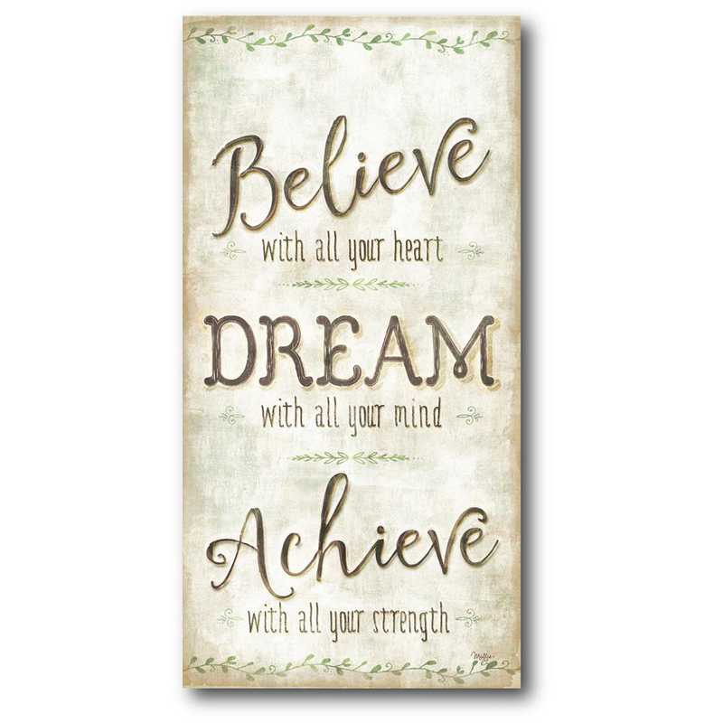 WEB-IF143-24x48: CS Believe & dream 24