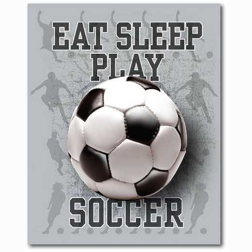 WEB-TS111-16x20: Eat Sleep Play Soccer, 16x20
