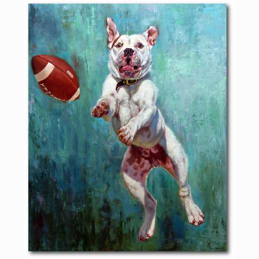 WEB-TS134-16x20: Football Pit Bull, 16x20