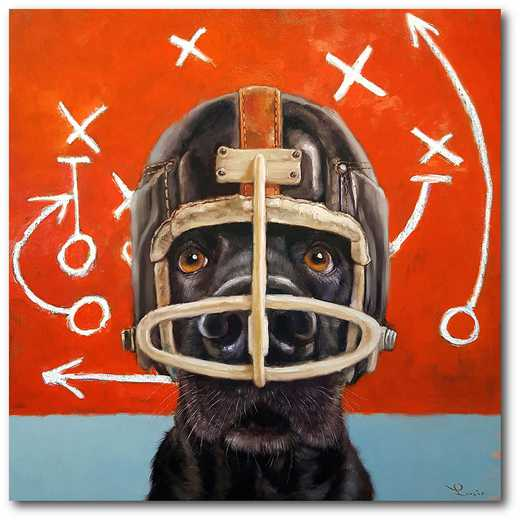 WEB-TS135-16x16: Dog in Football Helmet, 16x16