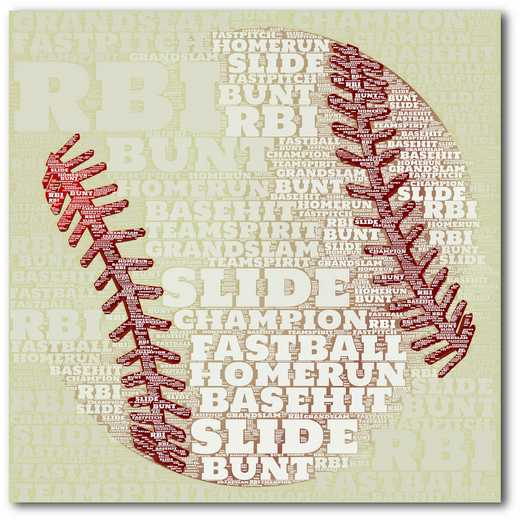 WEB-TS136-16x16: Baseball Sentiment, 16x16