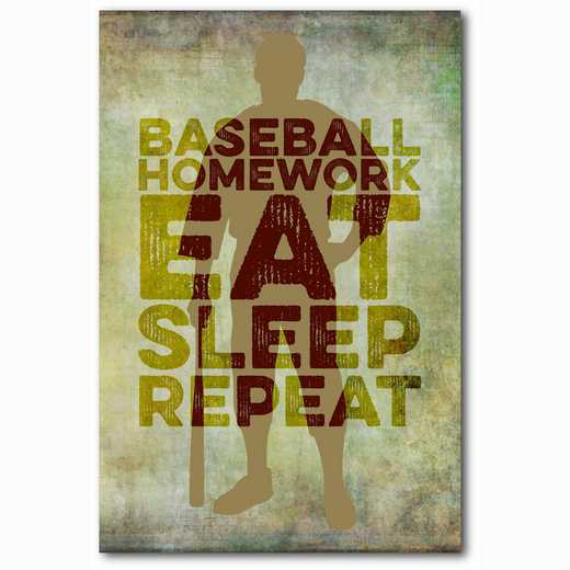 WEB-TS146-12X18: Eat Sleep Repeat Baseball, 12x18