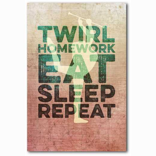 WEB-TS147-12X18: Eat Sleep Repeat Cheer, 12x18