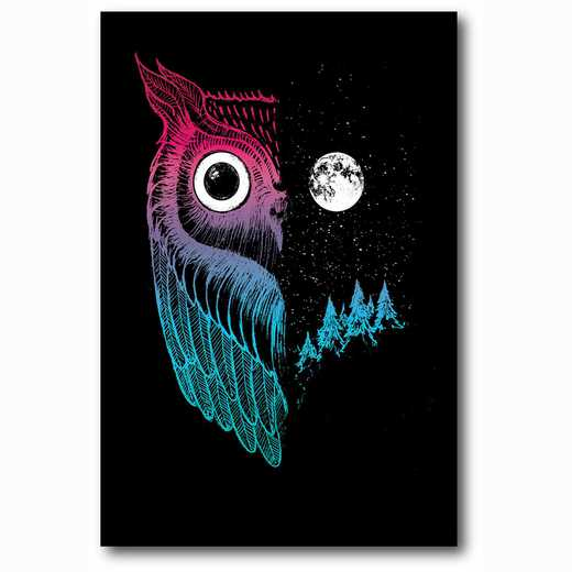 WEB-MV250-12x18: Night Owl , 12x18