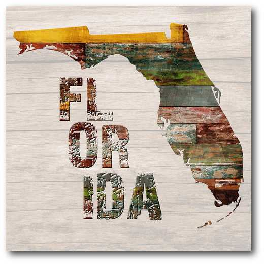 WEB-ST171-16x16: Florida Map , 16X16
