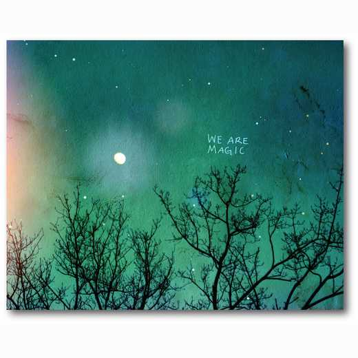 WEB-TS222-16x20: We are Magic , 16x20