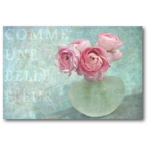WEB-SC563-12X18: Belle Fleur , 12x18