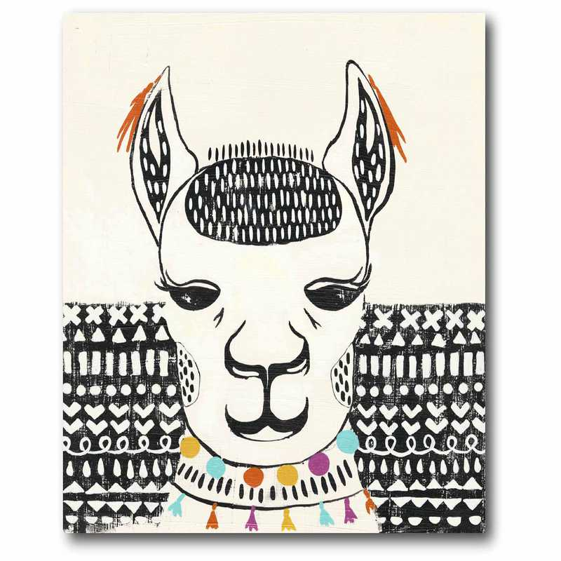 WEB-JV507-11x14: Llama Face II Canvas 11x14
