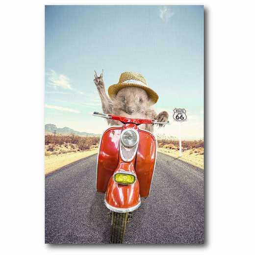WEB-MV239-12x18: Hedgehog Traveler Canvas 12x18