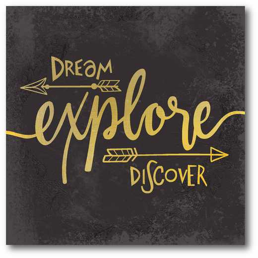 WEB-T727: Dream Discover Explore Canvas 16X16