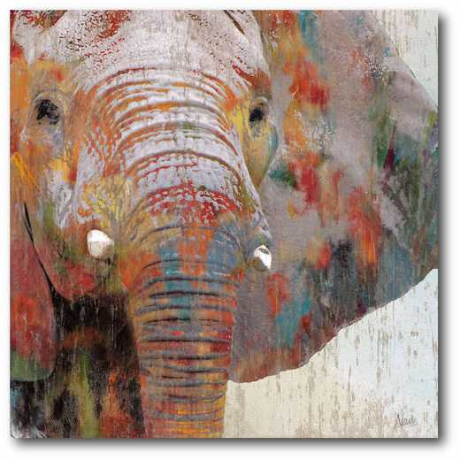 WEB-G231: Vintage Elephant Canvas 16x16