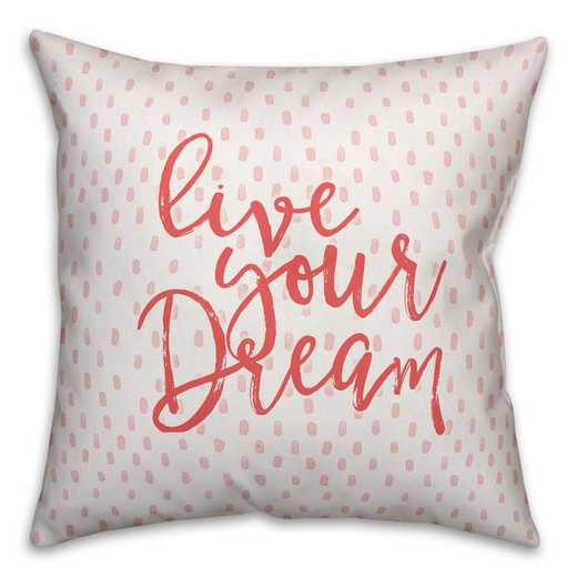 4627-AL: 18X18 Pillow Love Your Dream