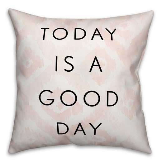 3963-BS: 18X18 Pillow Today Is A Good Day