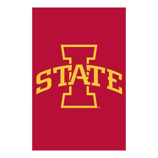 16962B: EG Iowa State Applique Garden Flag