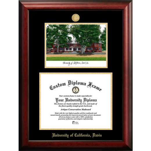 CA942LGED-1711: University of California, Davis 17w x 11h Gold Embossed Diploma Frame with Campus Images Lithograph