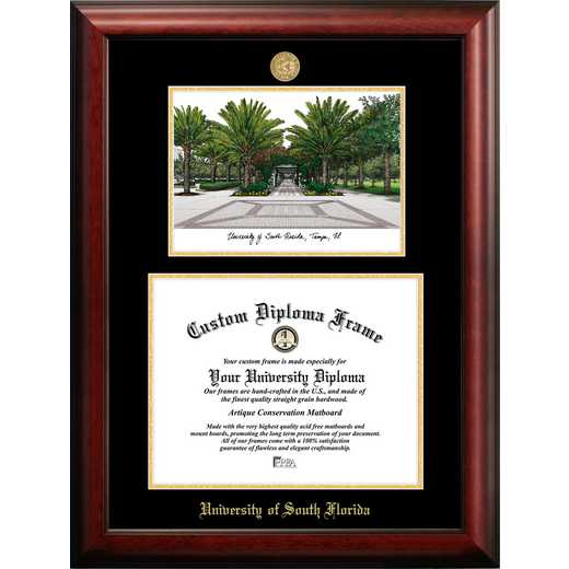 FL989LGED-1411: University of South Florida 14w x 11h Gold Embossed Diploma Frame with Campus Images Lithograph