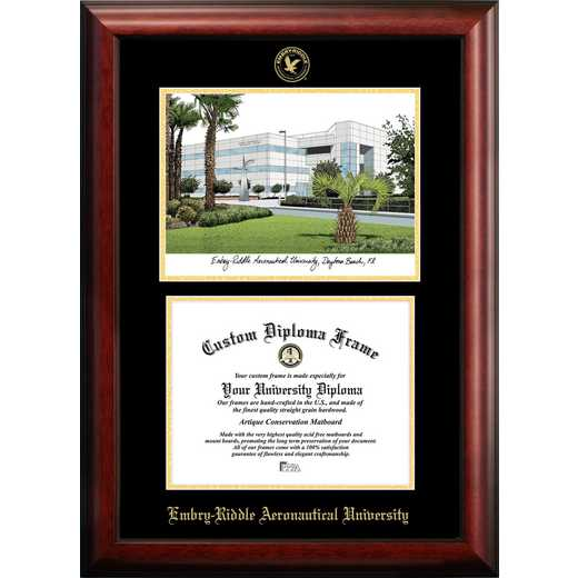 FL995LGED-1185: Embry-Riddle University 11w x 8.5h Gold Embossed Diploma Frame with Campus Images Lithograph