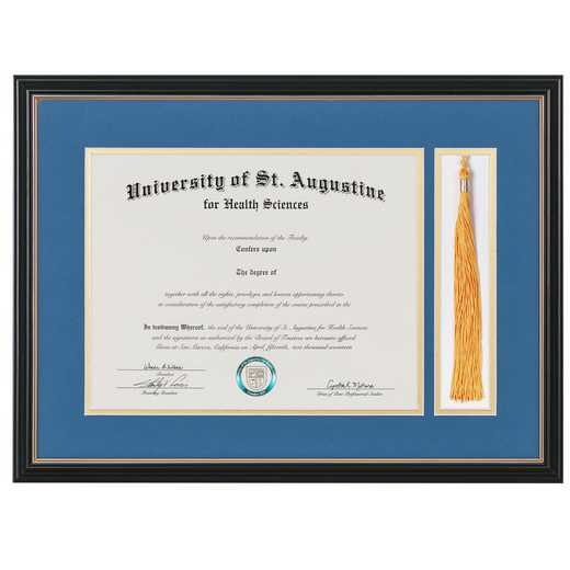 "Standard Black & Gold Diploma Frame with Gold Matting & Tassel Display fits 11"" x 14"" Diploma"
