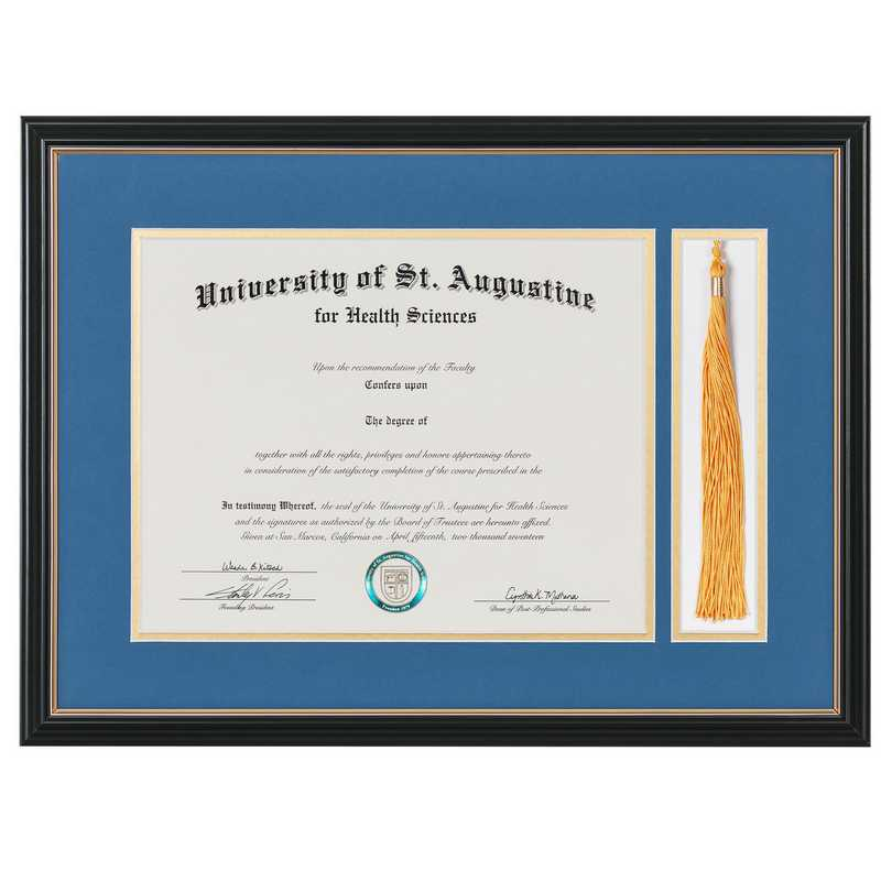 Standard Black & Gold Diploma Frame with Gold Matting & Tassel Display fits 11