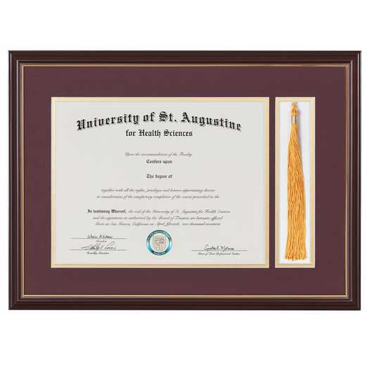 "Standard Black & Gold Diploma Frame with Silver Matting & Tassel Display fits 11"" x 14"" Diploma"