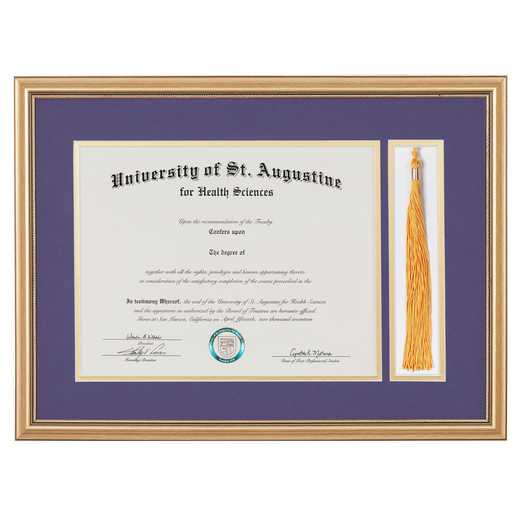 Heritage Frames 11x14 Standard Gold Wood Diploma Frame with Tassel Display