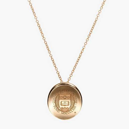 BC0113AU: 14k Yellow Gold BC Organic Necklace by KYLE CAVAN