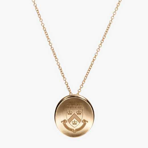 CLM0113AU: 14k Yellow Gold Columbia Organic Necklace by KYLE CAVAN