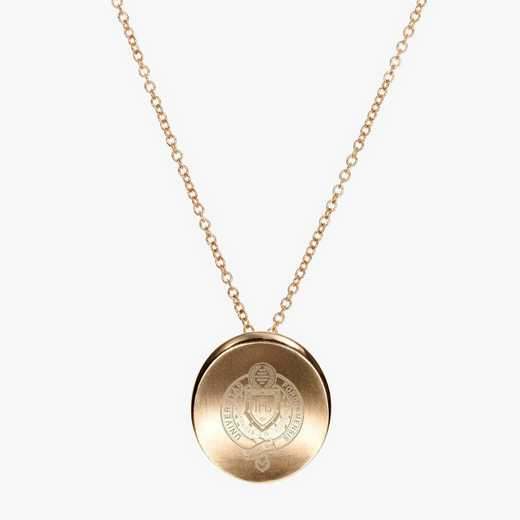 FU0113AU: 14k Yellow Gold Fordham Organic Necklace by KYLE CAVAN