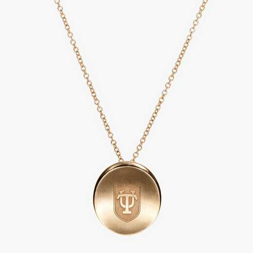 TUL0113AU: 14k Yellow Gold Tulane Organic Necklace by KYLE CAVAN