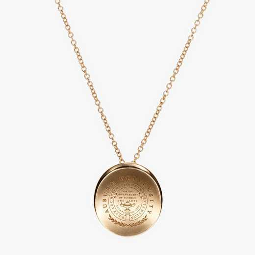 AUB0113AU: 14k Yellow Gold Auburn Organic Necklace by KYLE CAVAN